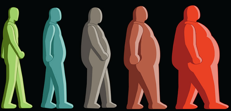 Florida Obesity, Weight Loss Centers
